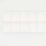 Tip Box 250 pz - 1010200